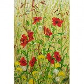 Poppies & Dandelions Thumbnail