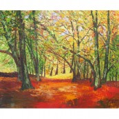 South Downs in Autumn Thumbnail