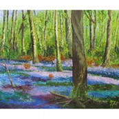 Bluebell Wood South Downs Thumbnail